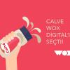 Calve'nin Yeni Dijital İletişim Ajansı; Wox Digital!