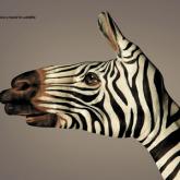 Reklamda Yaratıcılık Nedir ve Nasıl Kullanılır?