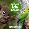 Facebook'ta Yemyeşil Bir Sosyal Sorumluluk Projesi: Doğada İzin Kalsın