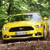 Ford Mustang İle Şampiyonlar Bir Arada!