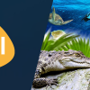 BAL'a Yeni Yol Arkadaşı: Emaar Akvaryum & Sualtı Hayvanat Bahçesi