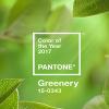 PANTONE, 2017 Yılının Favori Rengini Belirledi