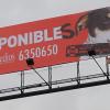 Barınaklardaki Köpekleri Sahiplendirmek İçin Hazırlanan Billboardlar