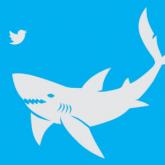 Köpekbalıkları Konumlarını Tweet Atıyor!