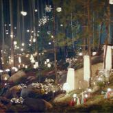 IKEA Reklam Kampanyası: IKEA Ormanı
