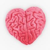 Nöropazarlama Sertifika Programı