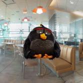 Angry Birds, McDonalds'da İş Başında