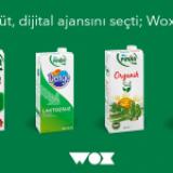 Pınar Süt Yeni Dijital Ajansını Seçti: Wox Digital