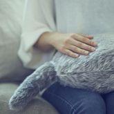 Kedi Kuyruklu Robotik Yastık: Qoobo