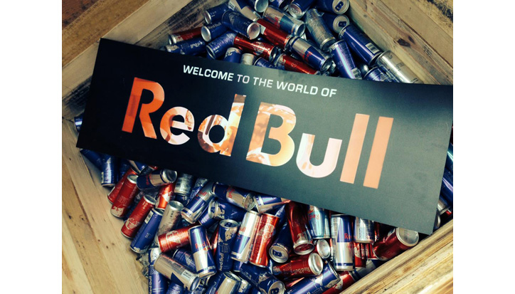red bull youth republic