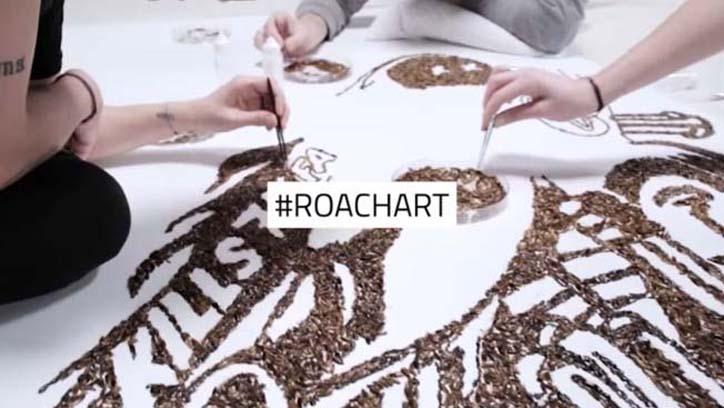 raid roachart