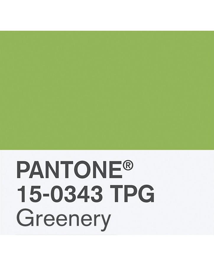 pantone-renk-kataloğu